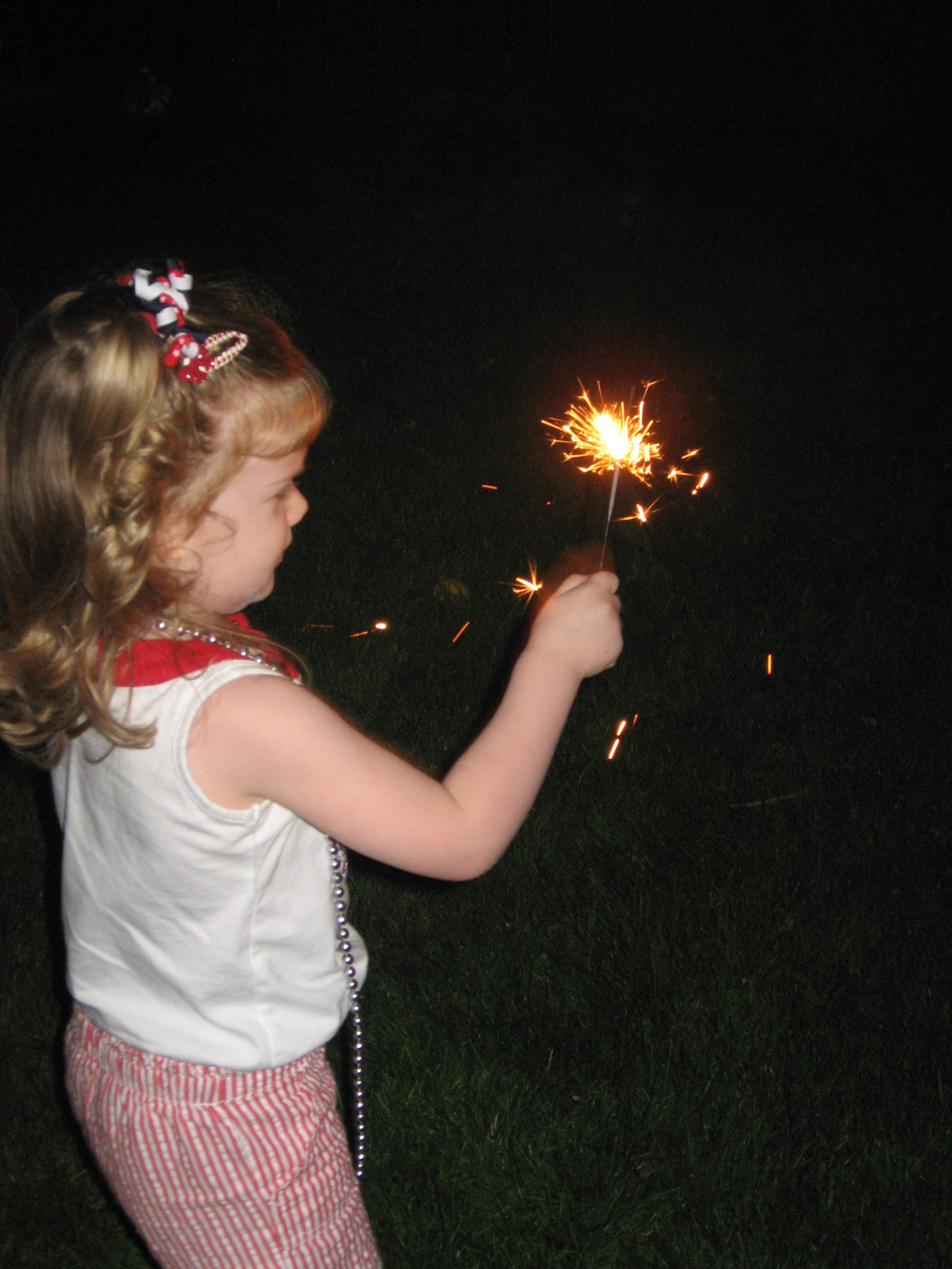 Amelia\'s Fourth of July