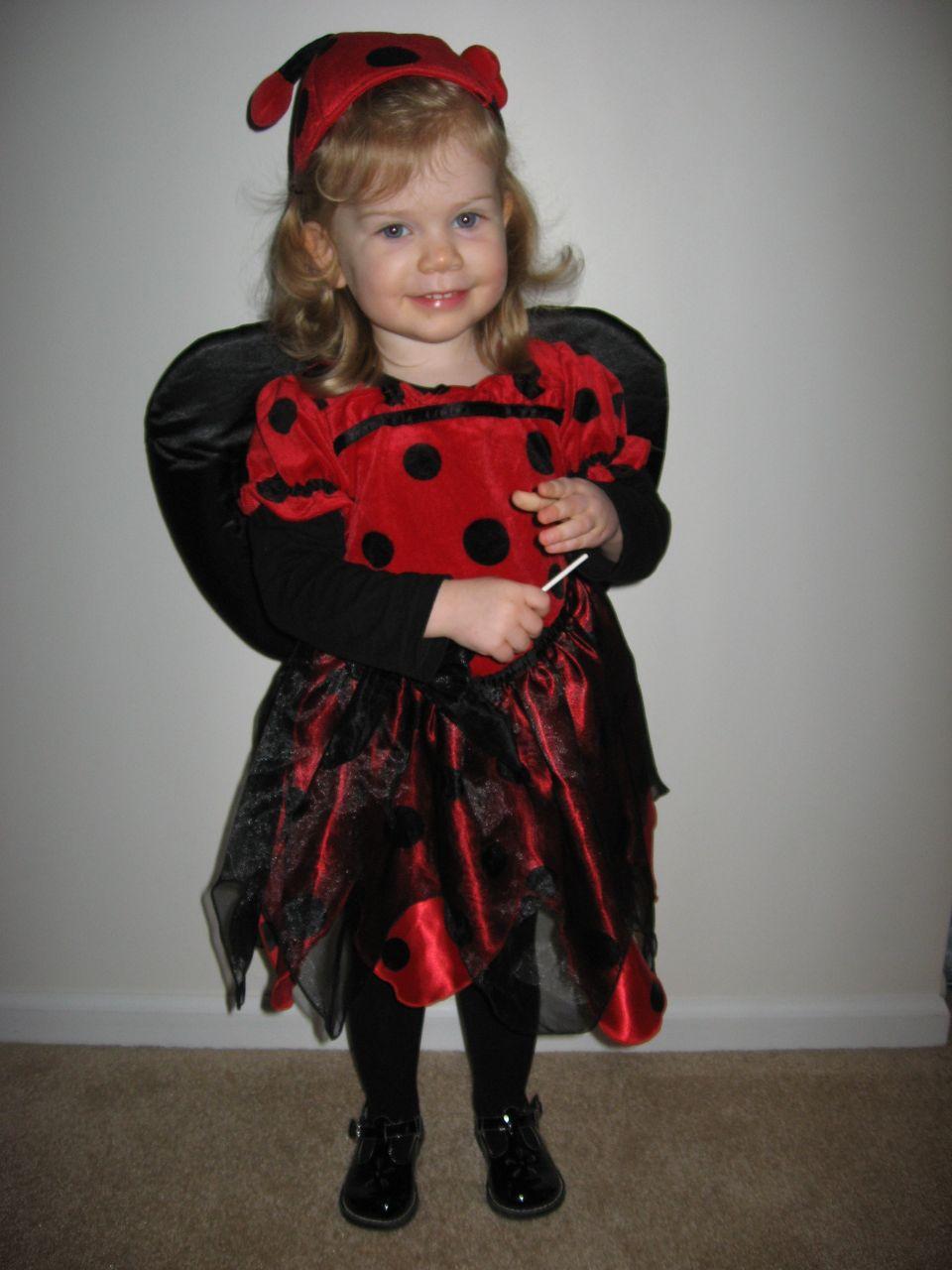 Amelia the Ladybug