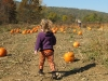 Amelia in the Pumpkin Patch