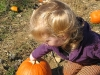 Amelia Picks a Pumpkin